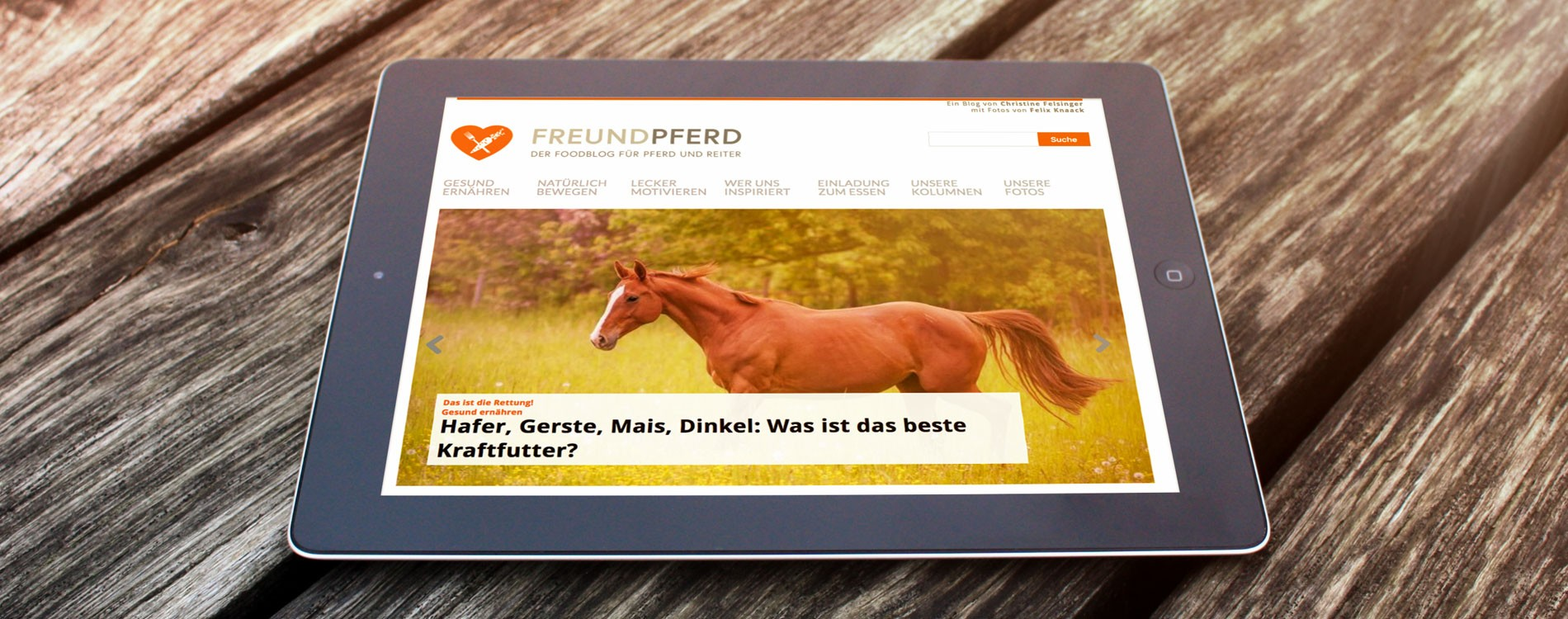 404MEDIA Projekt - FreundPferd.de